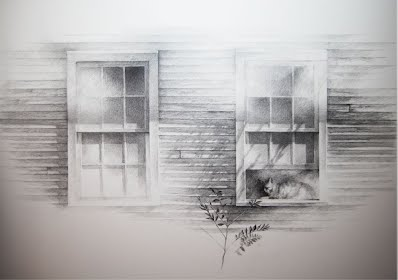 Cat in a picture of two windows, beginning of weeds drawn
