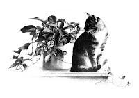 Daydreams by Carroll Jones III print of original graphite drawing