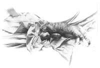 SWEET DREAMS by Carroll Jones III cat cozying up in sheet folds